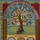 Shaoftim